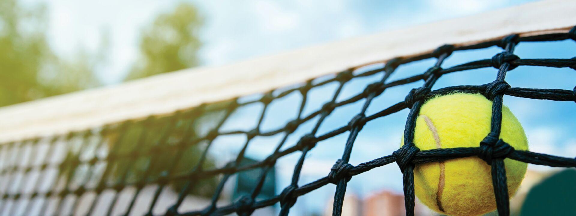 The tennis ball hits the net