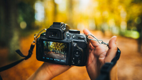Two hands holding a black video camera. On the camera monitor is a forest with fall tones. The background of the actual image is blurred.